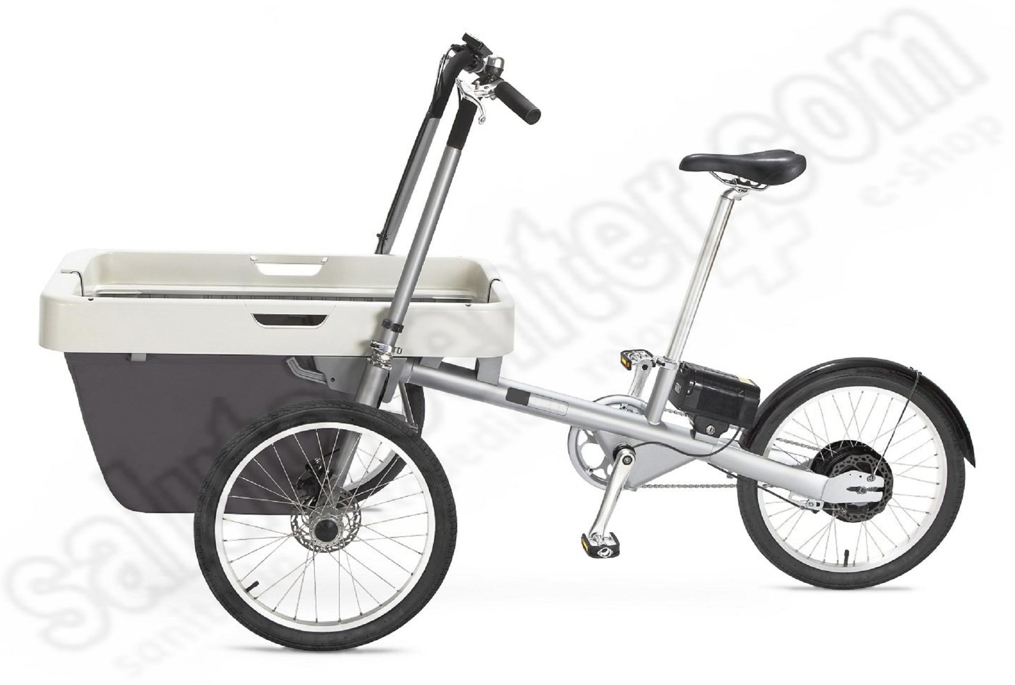Bicicletta Elettrica A 3 Ruote Con Cestone Anteriore